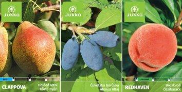 Poukaz na ovocné stromky a okrasné dřeviny v Tovačově a Ostrožské Nové Vsi