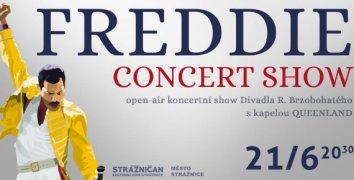 Lístek na open air koncertní show FREDDIE - CONCERT SHOW ve Strážnici 21.6.2019