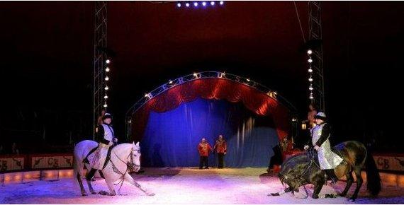 Lístek do Národního Cirkusu Originál Berousek v Opavě 18. - 28.4.2019