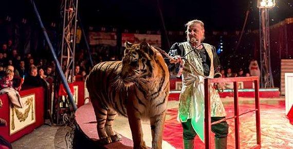 Navštivte cirkus JO-JOO